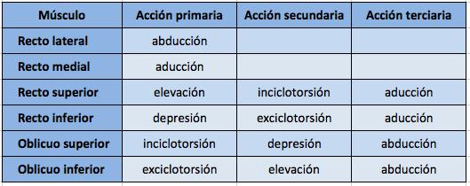 tabla-acciones-de-los-musculos-oculares